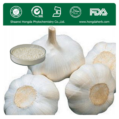 Garlic Extract 1%-5% Allicin