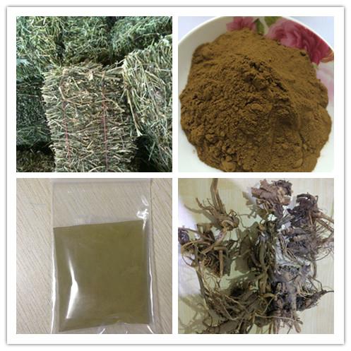 Echinacea extract.jpg