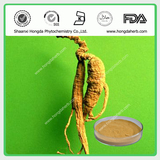 80% Ginseng extract