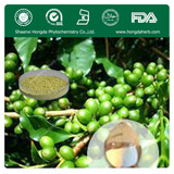 Coffee Bean Extract(20%)