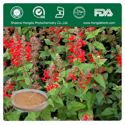 Chia Seed extract Carnosic Acid