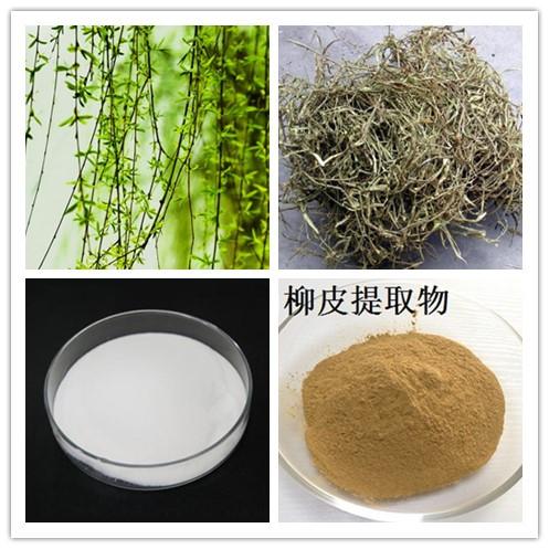 white willow bark extract.jpg